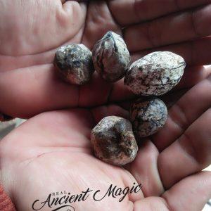 "Stone Mustika ""Hazelnut"""