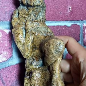 Fossil Of The Shaman Lord Of Mount Merapi